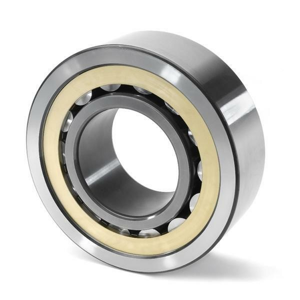 RSL185014 INA Cylindrical Roller Bearing